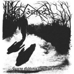 Zmora - Czarne otchłanie i martwe cienie