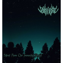 Darlament Norvadian - Silent From The Immortal Forest (ReRelease)