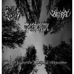 Nostalgie Depression/Darlament Norvadian/DreamEngine - Dias Grises De Soledad & Depresion
