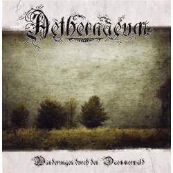 Aethernaeum - Wanderung durch den Daemmerwald