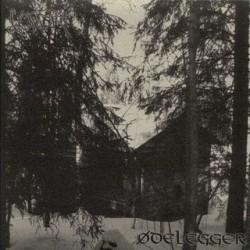 Vordr/Ødelegger Split LP